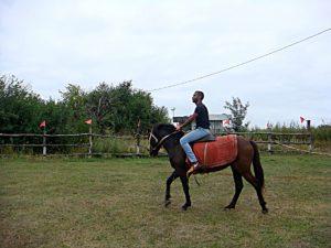 На коняці студент